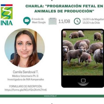 """INIA Kampenaike tiene el agrado de invitarles a la charla virtual: """"Programación fetal en animales de producción"""""""