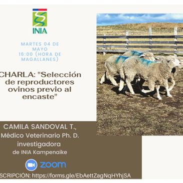 """INIA Kampenaike, quienes realizarán una interesante charla on line con respecto a la """"Selección de reproductores ovinos previo al encaste"""""""